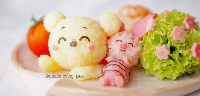 im-a-doctor-who-makes-adorable-rice-balls-during-her-free-time-50__700