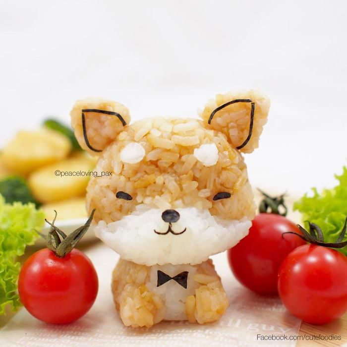 im-a-doctor-who-makes-adorable-rice-balls-during-her-free-time-58__700