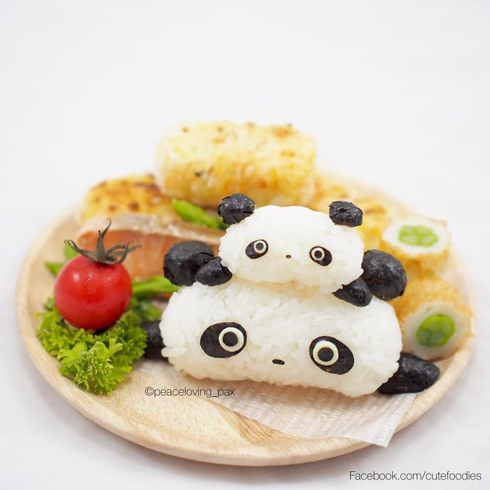 im-a-doctor-who-makes-adorable-rice-balls-during-her-free-time-38__700