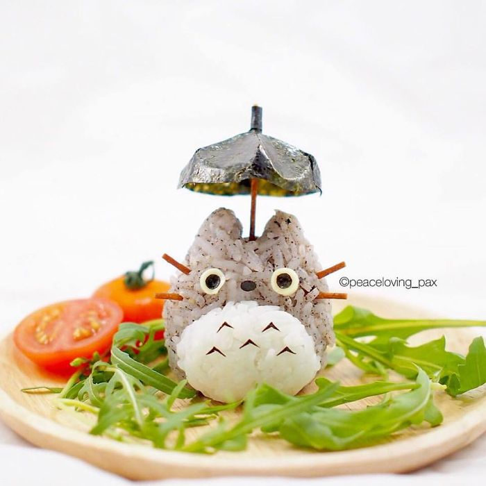 im-a-doctor-who-makes-adorable-rice-balls-during-her-free-time-48__700