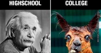 highschoolvscolege